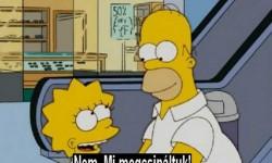Homer csak Homer