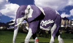Ha van lila tehén, miért ne lehetne lila elefánt?