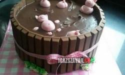 Csak egy ötletes torta