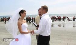 Ezen az esküvőn kicsit sok a hívatlan vendég!