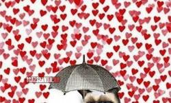 Grumpy cat és a Valentin nap