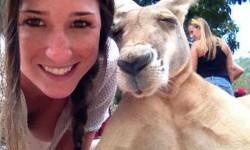 Pedig a kenguruk általában vidámak