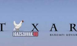 A magyar animációs stúdió