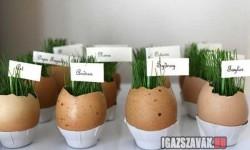 Kis kert tojáshéjból