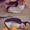 Az igazi kinder pingui