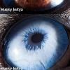 Makró fotók állatok szemeiről