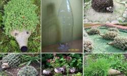 Csináld magad: zöld süni a kertbe