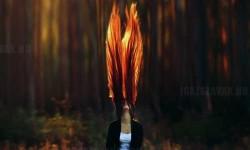 Igazi tüzes haj