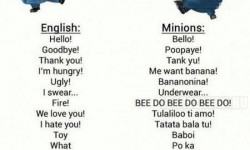 Minion szótár