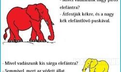 Mivel vadászunk nagy kék elefántra?