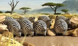 Ha lenne McDonalds Afrikában