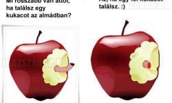 Mi rosszabb van attól, ha egy kukacot találsz az almádban?