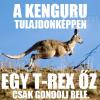 A kenguru tulajdonképpen…