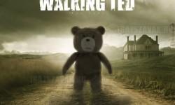 Ted ujragondolva