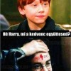 Héé Harry, mi a kedvenc együttesed?