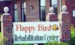 Flappy Bird Rehabilitációs Központ