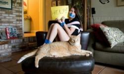 Megkérték a lányt, hogy vigyázzon a macskájukra – Ezt a képet küldte nekik