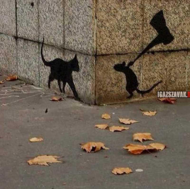 Cool utcai fal rajz