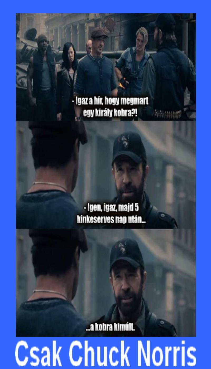 Csak Chuck Norris
