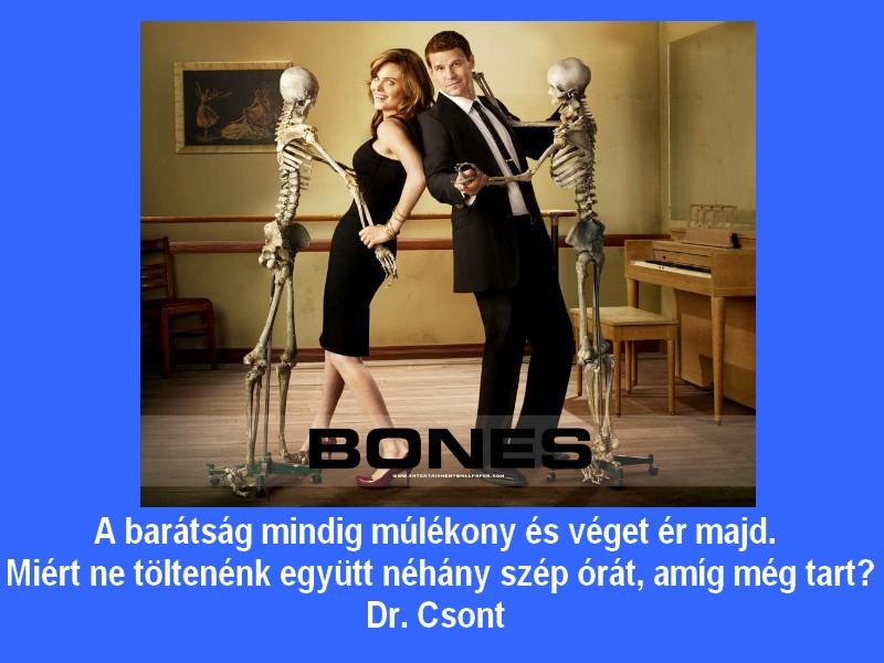 Dr csont