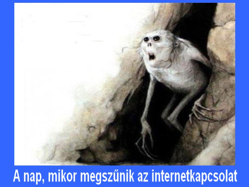 a nap, mikor megszűnik az internetkapcsolat