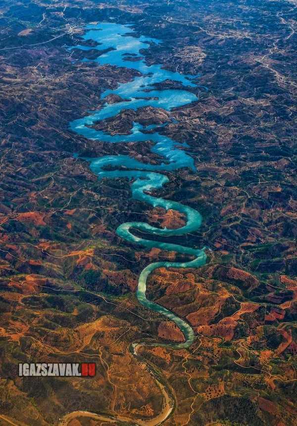 A portugál kék sárkány