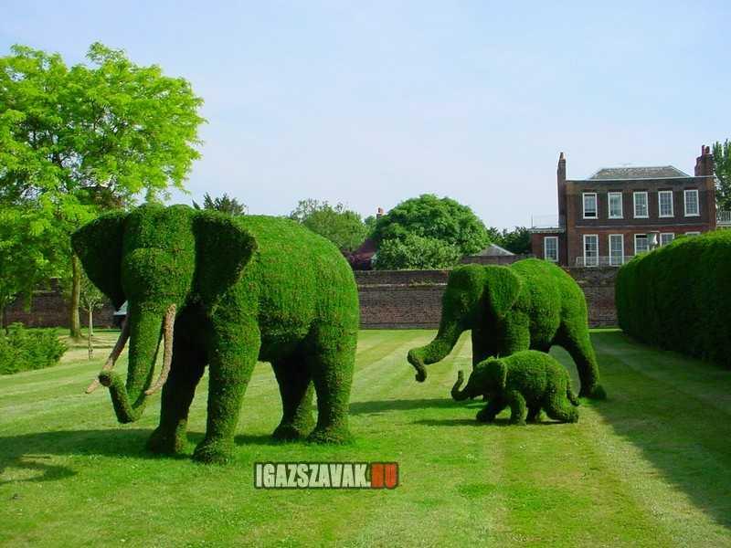 Egy elefántcsalád