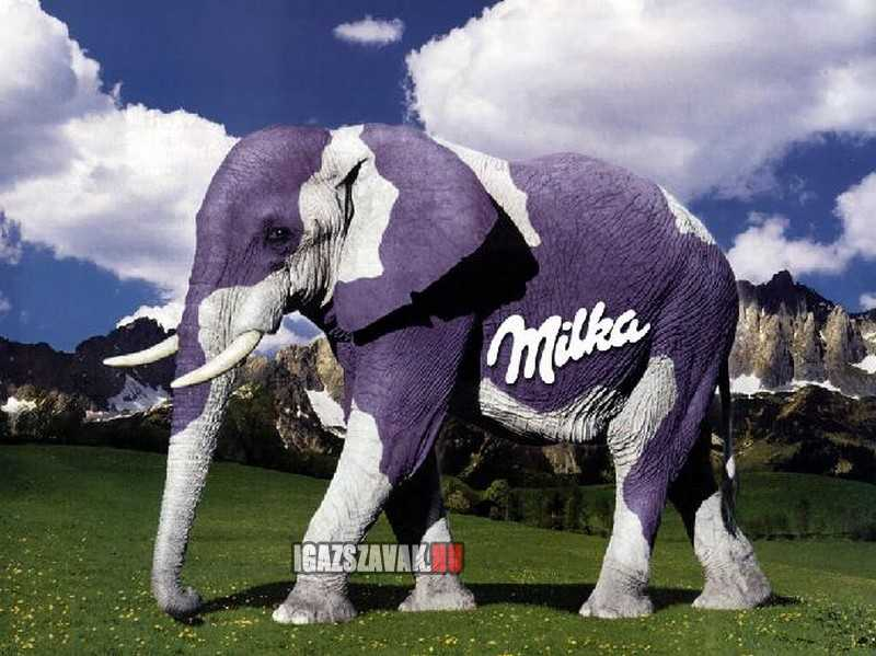 Ha van lila tehén, miért ne lehetne lila elefánt