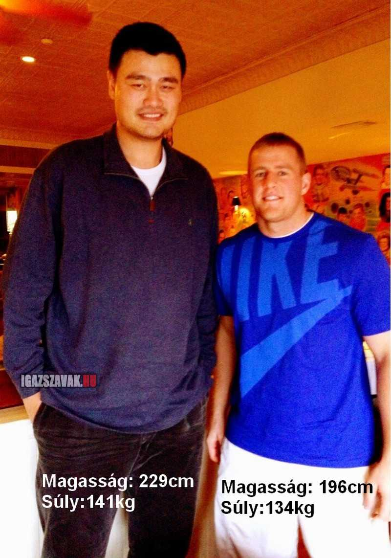J.J.Watt törpének érezheti magát Yao Ming mellett