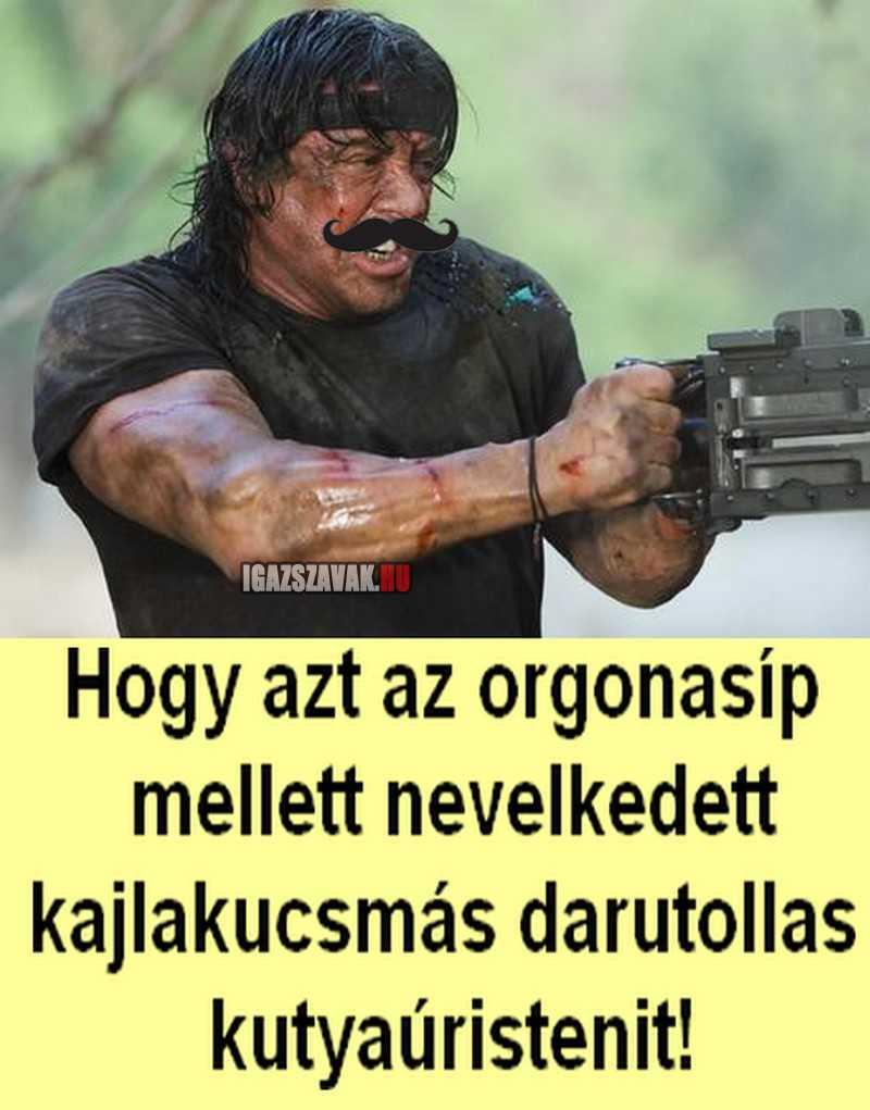 Rambo- kutyaúristenit