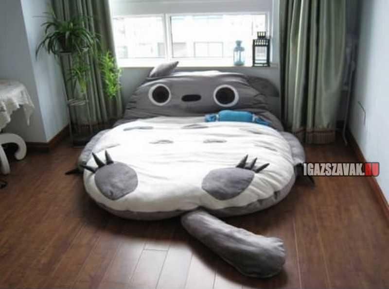 van kedved velem aludni