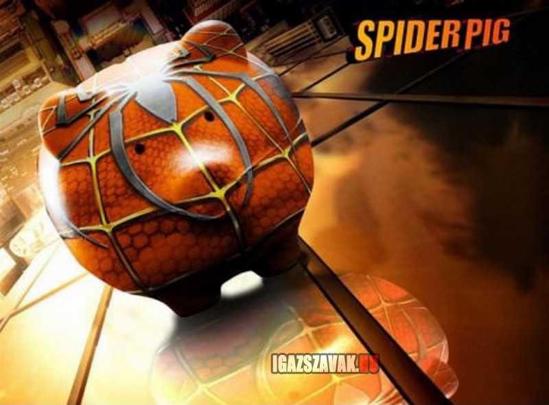 vigyázz, jön a pókmalac