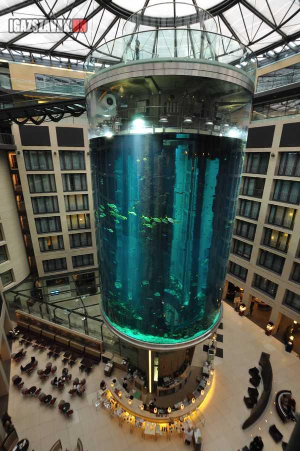 Akvárium A Radisson Blu Hotelban
