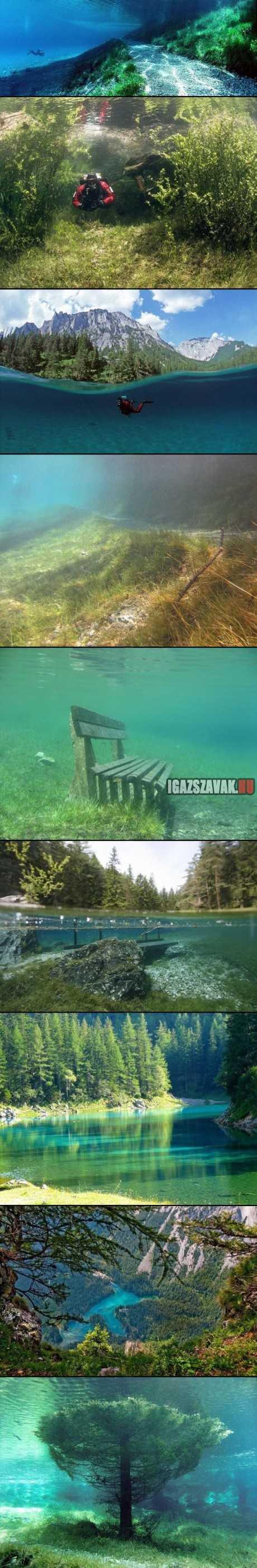 egy park amely nyáron tóvá alakul