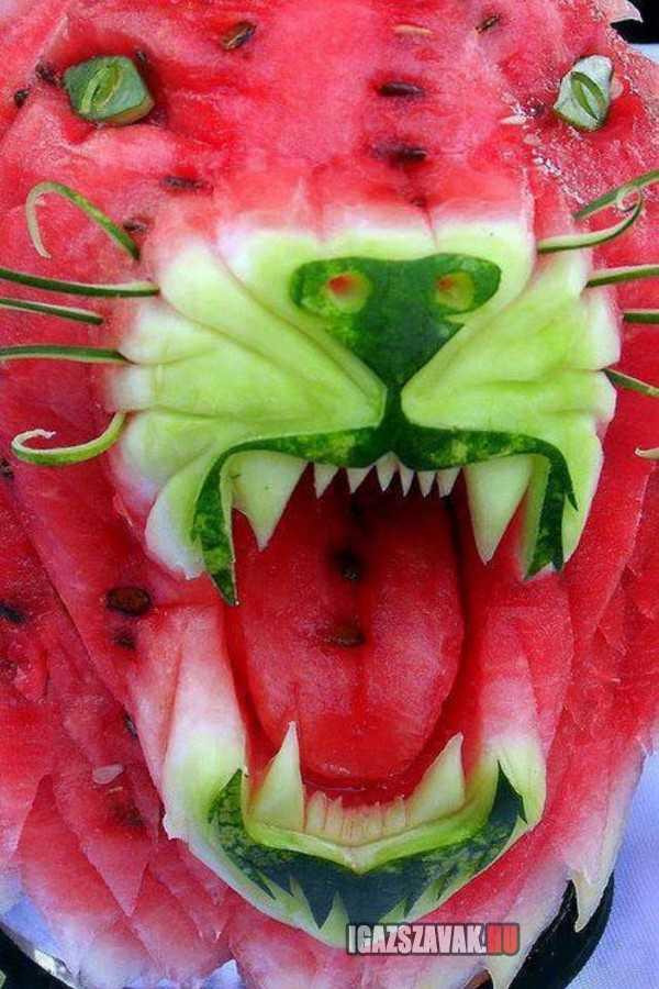 görögdinnye oroszlán
