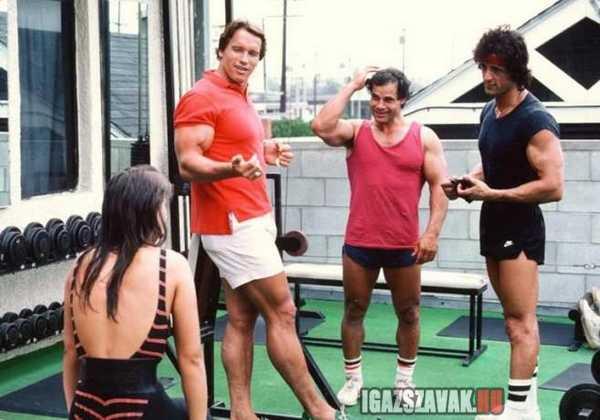 retró edzéspillanat Arnold Schwarzeneggerrrel és Silvester stallonéval