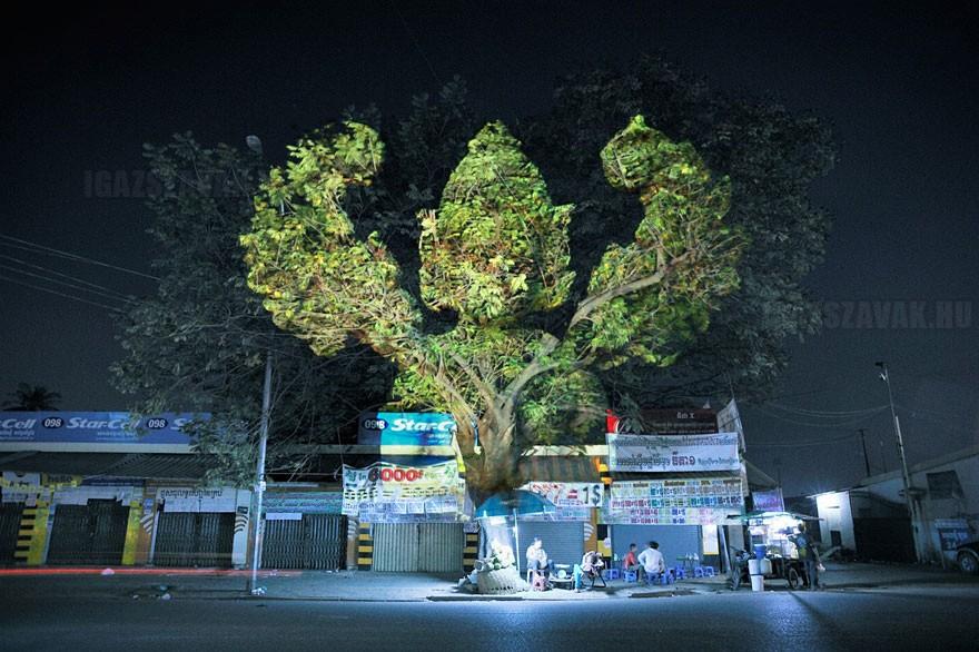 3D alkotások a fákon9