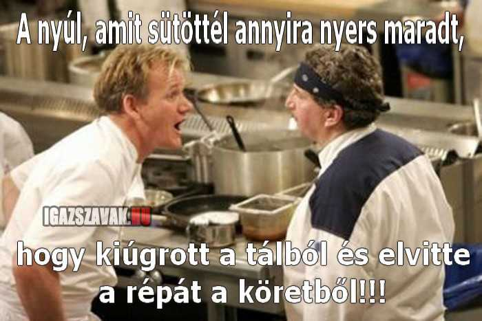 Gordon Ramsay vs. nyúl