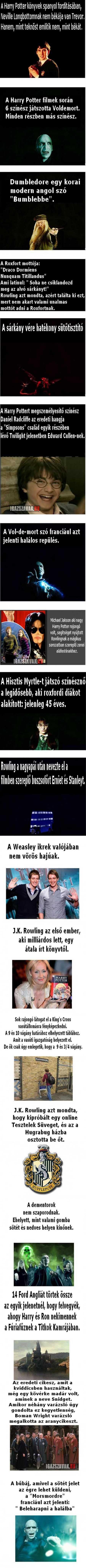 Harry Potter, tények a történetről
