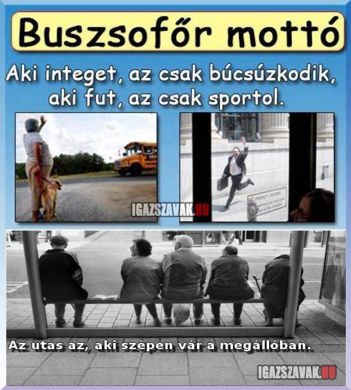 buszsofőr mottó