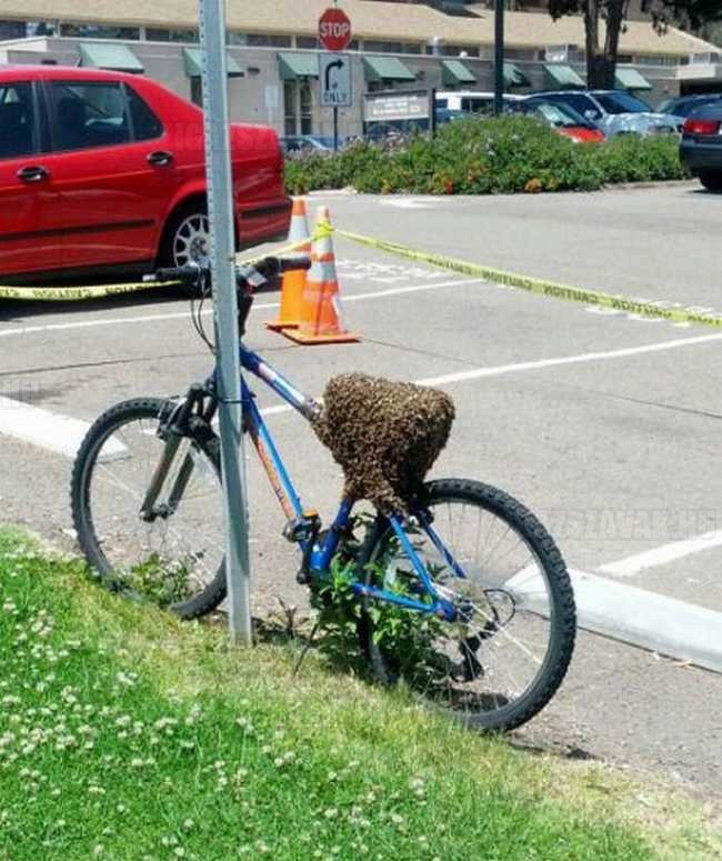 1 millióért ráülnél erre a biciklire
