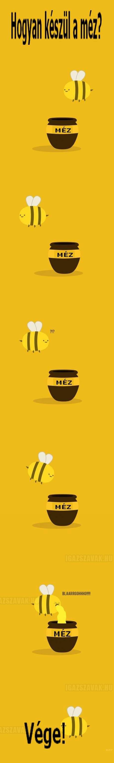 a mézkészítés története