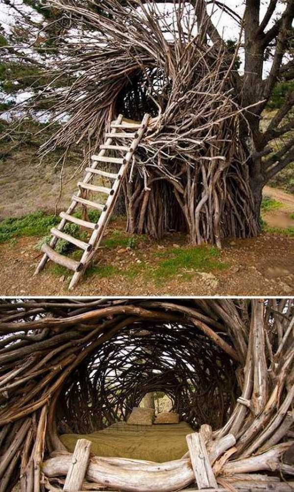 egy fantasztikus fa ágy