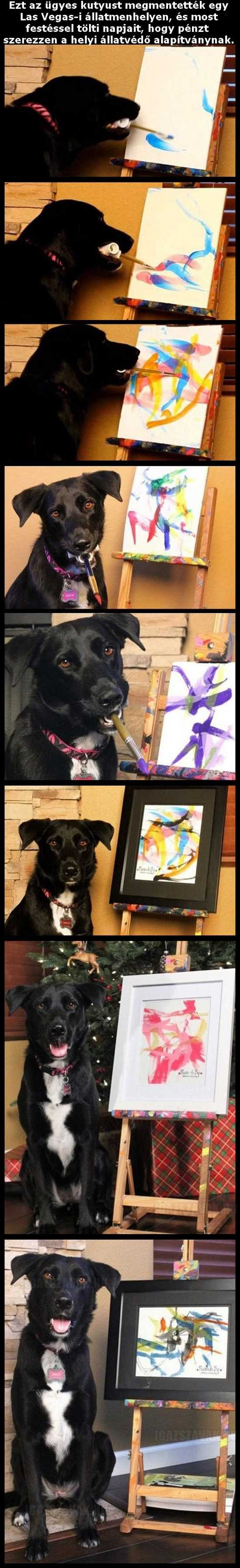 Egy kutyus aki tud festeni
