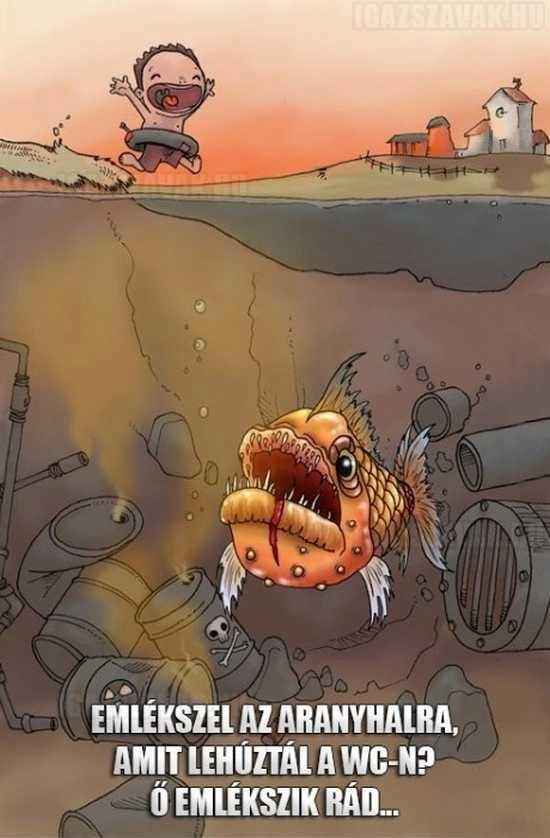 Emlékszel az aranyhalra, amit lehúztál a WC-n