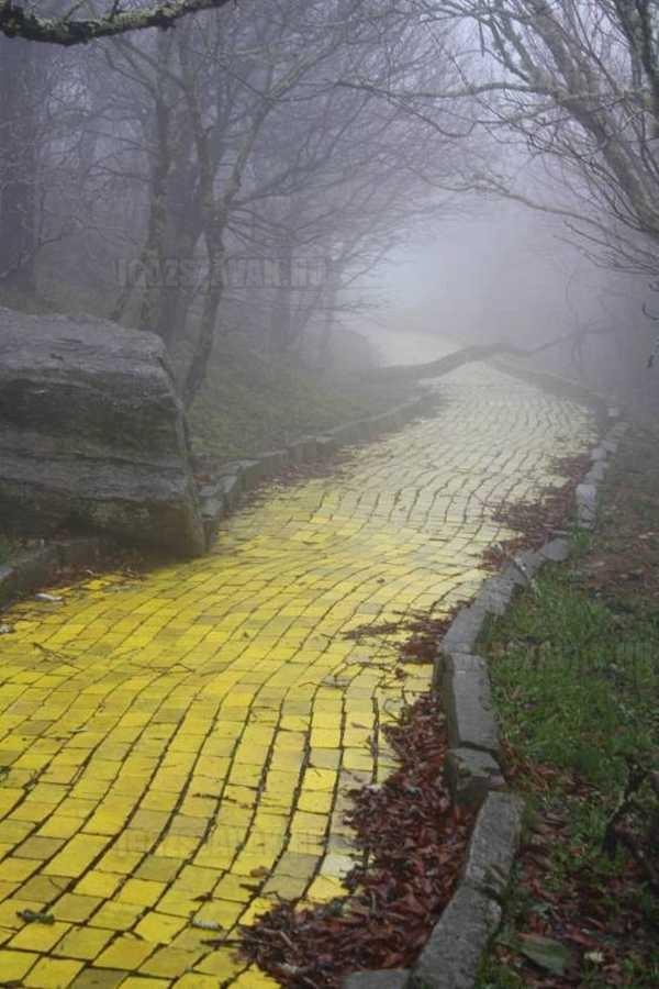 hátborzongató fotó egy elhagyott sárga köves út az óz a csodák csodája vidámparkból észek kaliforniában