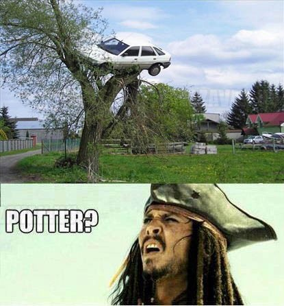 Potter, te vagy az