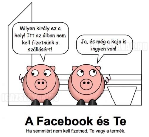 A Facebook és te