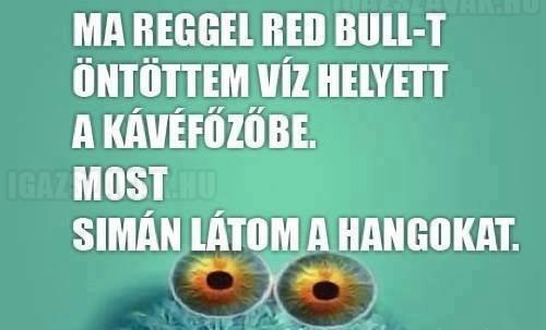 Víz helyett Red Bull...