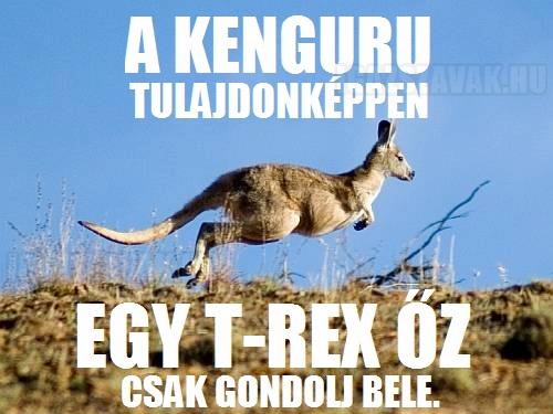 A kenguru tulajdonképpen...